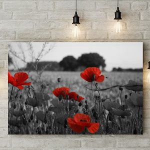 Tablou canvas Gray Poppy