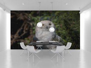 Fototapet White Owl - Tapet 3d dormitor